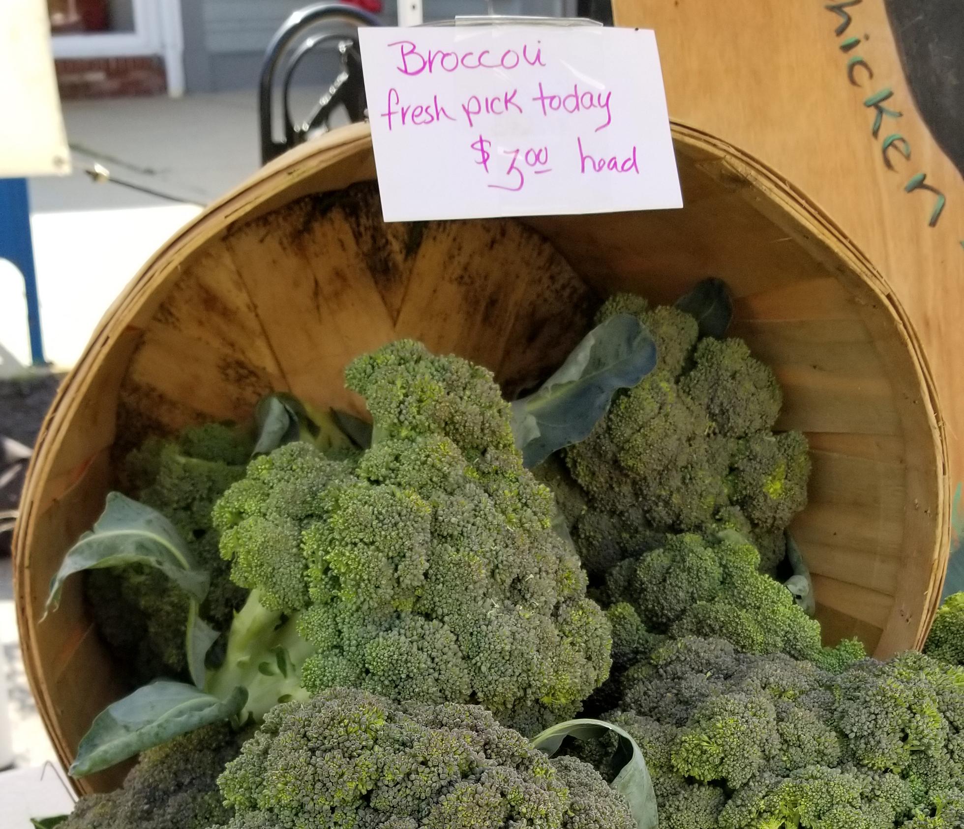 farm fresh broccoli