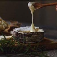 harbison cheese
